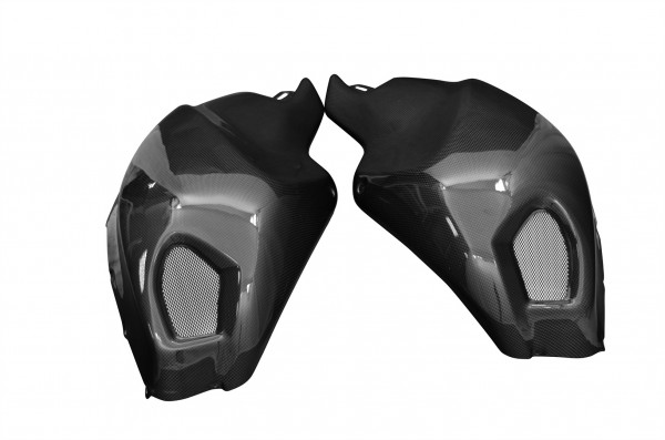 Carbon-Tankverkleidung-DucatiMonster-1100