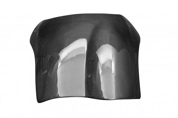 Carbon-Windschild-BuellS1