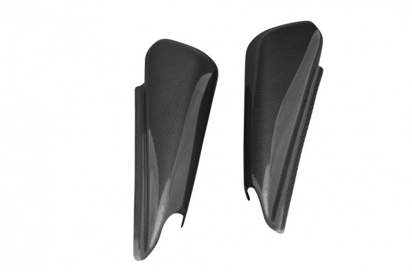 Carbon-Seitenverkleidung-DucatiMonster-S4R-S2R