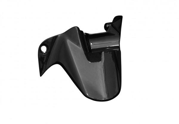Carbon-Hinteres-Schutzblech-DucatiMonster-1200S