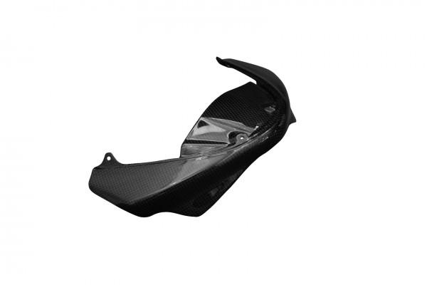 Carbon-Frontverkleidung-DucatiMonster -1100