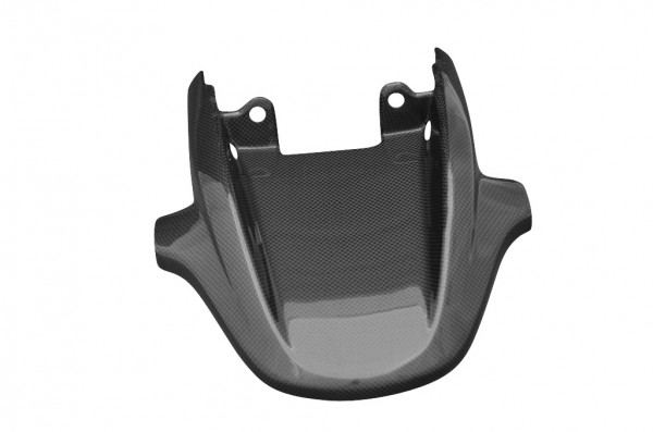 Carbon-Rücklichtverkleidung-DucatiMonster-S4R-S2R