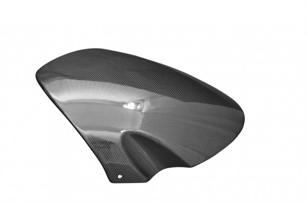 Carbon-Windschild-Buell1125