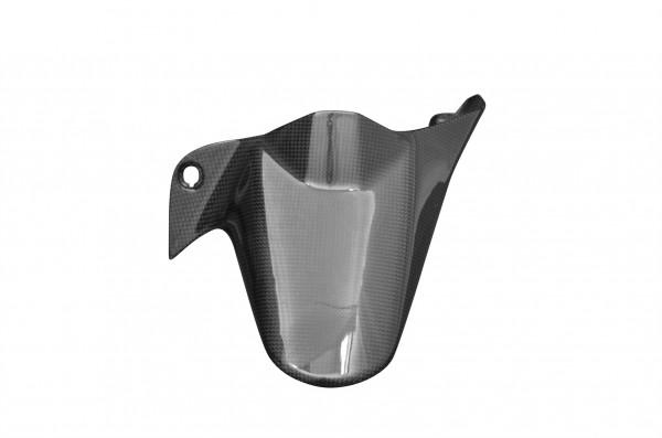Carbon-Hinteres-Schutzblech-DucatiMonster-1200-ab-2014