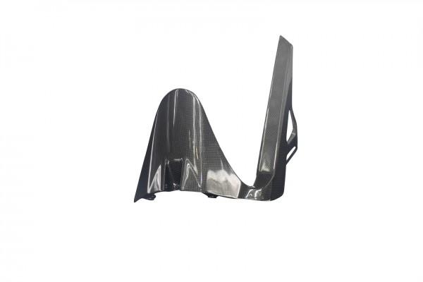 Carbon-Hinteres-Schutzblech-DucatiMonster-821-ab-2014