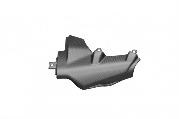 Carbon-Motorabdeckung-links-DucatiMonster-1200-ab-2014