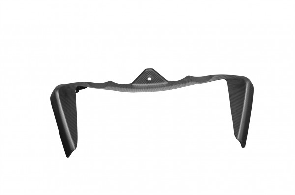 Carbon-Kühlerverkleidung-DucatiMonster-1200-ab-2014