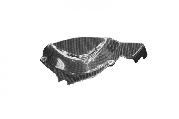 Carbon-Ritzelabdeckung-DucatiMonster-821-2014