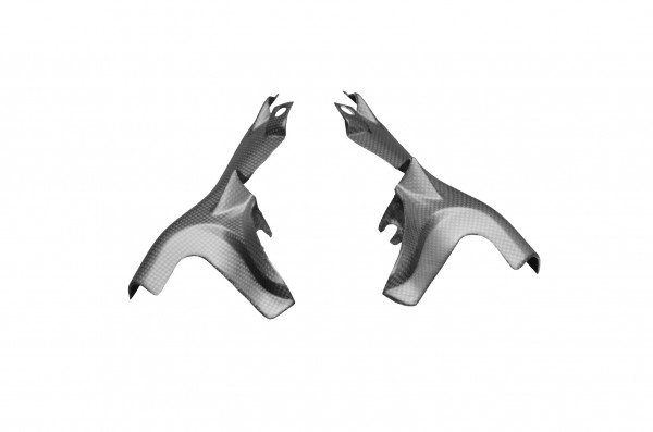Carbon-Heckrahmenverkleidung-DucatiMonster-1200-ab-2014