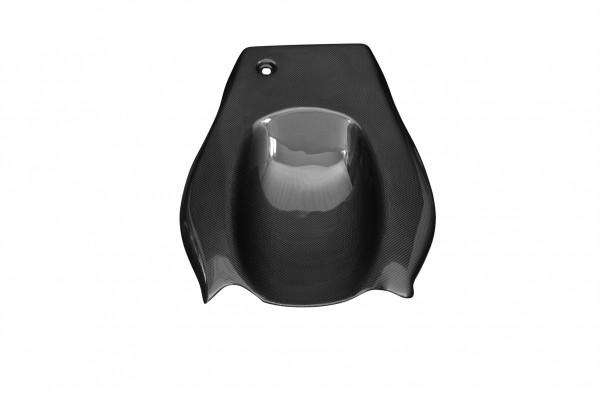 Carbon-Heckunterverkleidung-Buell-X1
